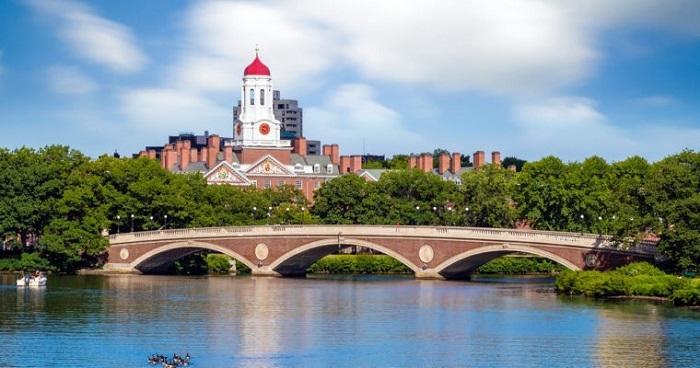 比散户更有远见,哈佛和MIT等常春藤高校试水加密货币行业投资